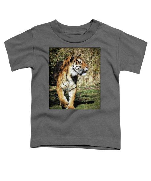 Sumatran Tiger  Toddler T-Shirt
