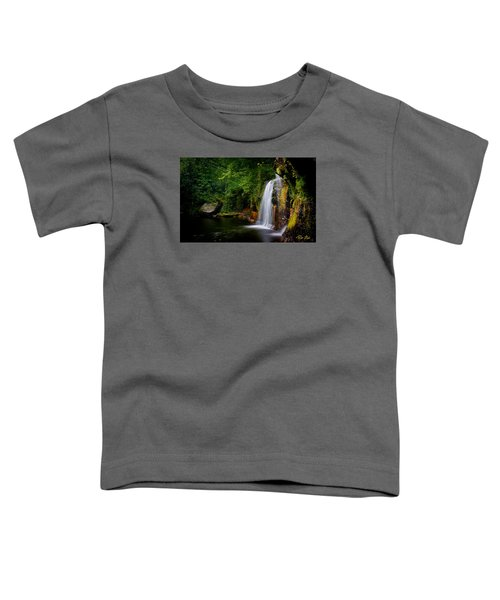 Toddler T-Shirt featuring the photograph Summer At Wolf Creek Falls by Rikk Flohr