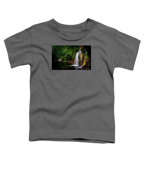 Summer At Wolf Creek Falls Toddler T-Shirt