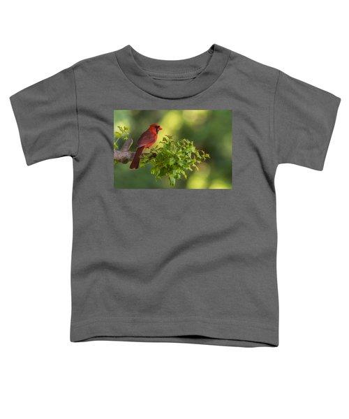 Summer Cardinal New Jersey Toddler T-Shirt