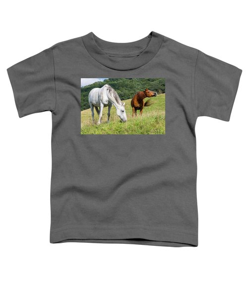 Summer Evening For Horses Toddler T-Shirt