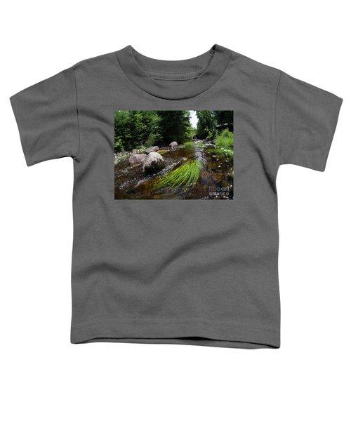 Summer Flow Of Water Near Rangeley Maine  -63322 Toddler T-Shirt