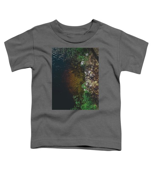 Summer Lake - Aerial Photography Toddler T-Shirt