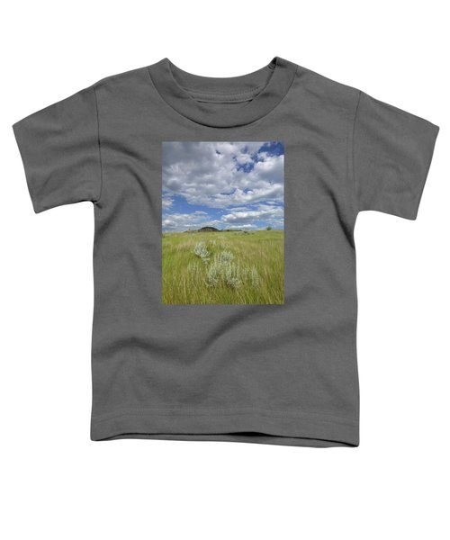 Summertime On The Prairie Toddler T-Shirt