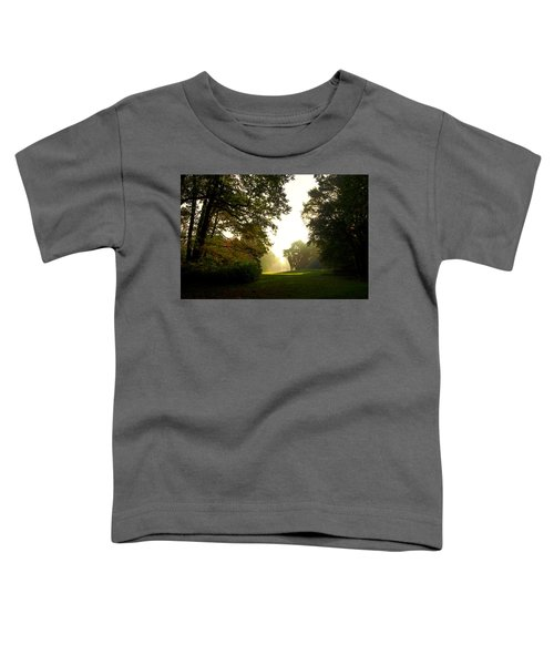 Sun Beams In The Distance Toddler T-Shirt