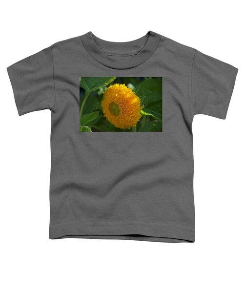 Sun Toddler T-Shirt