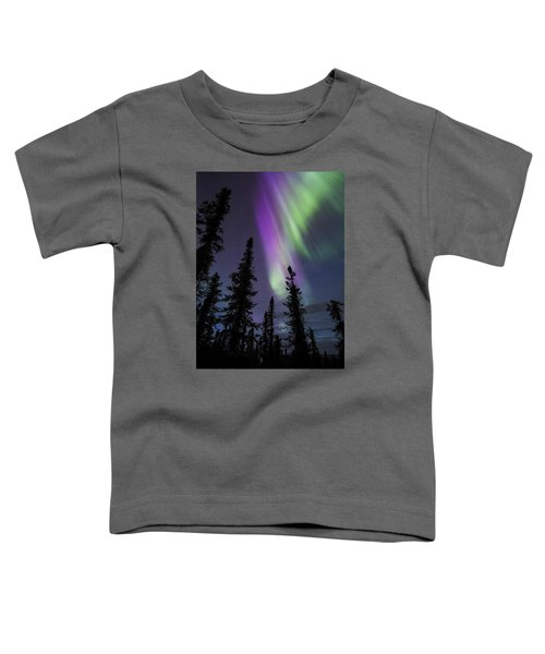 Sun-kissed Aurora Above The Spruces Toddler T-Shirt