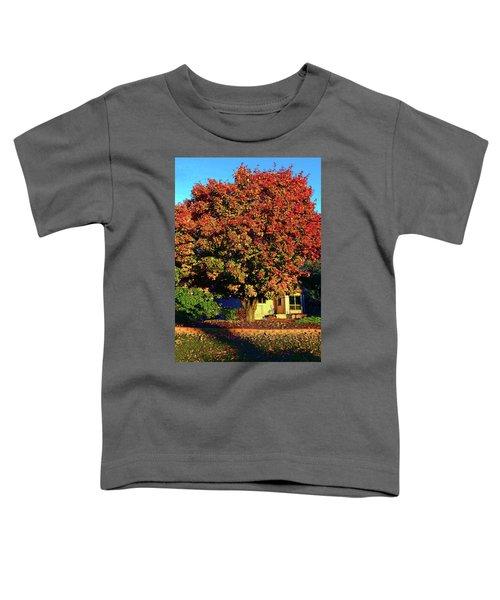 Sun-shining Autumn Toddler T-Shirt