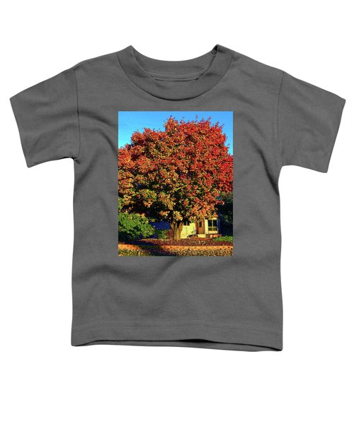 Sun-shining Autumn Toddler T-Shirt