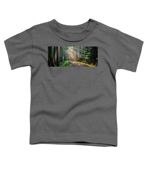 Sunbeams In Trees Toddler T-Shirt