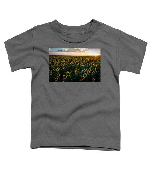 Sunflowers At Sunset Toddler T-Shirt