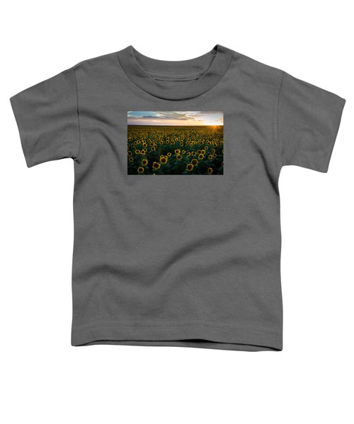 Sunflowers At Sunset Toddler T-Shirt