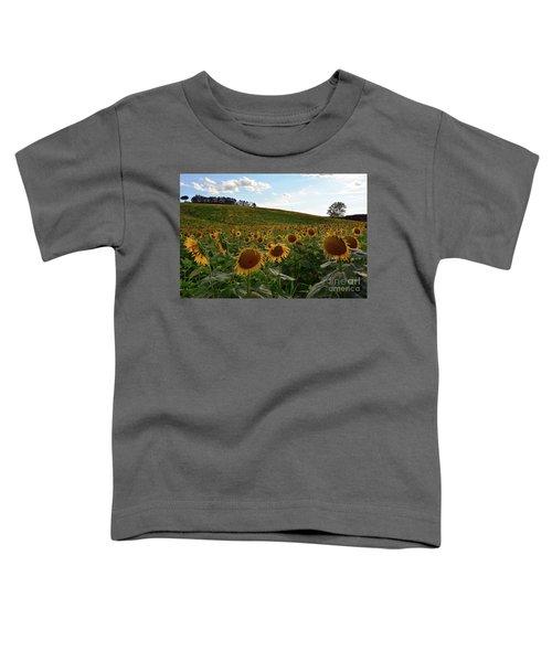 Sunflowers Fields  Toddler T-Shirt
