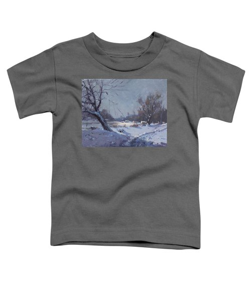 Sunlight In Freezing Cold Toddler T-Shirt