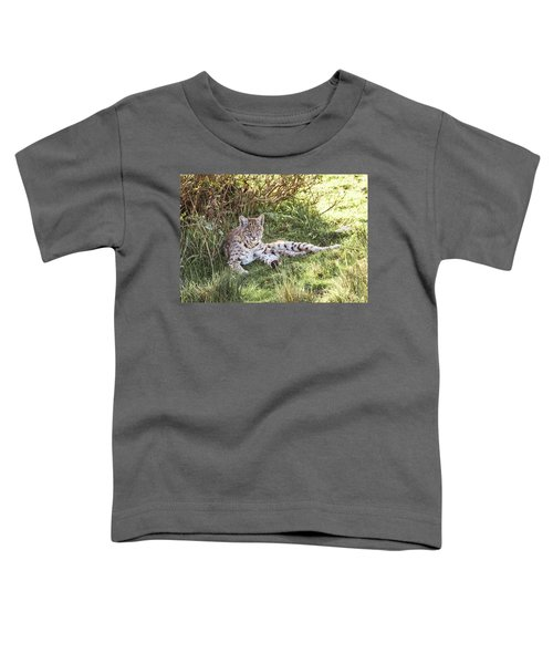 Sunlight Stop  Toddler T-Shirt