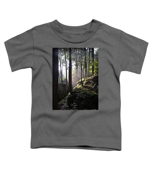Sunlight Through Trees At Beartown State Park 3129c Toddler T-Shirt
