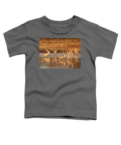 Sunrise At The Crane Pond Toddler T-Shirt