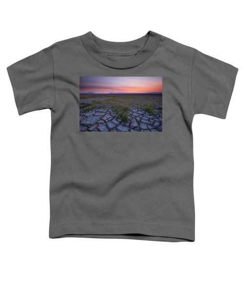 Sunrise On The Playa Toddler T-Shirt