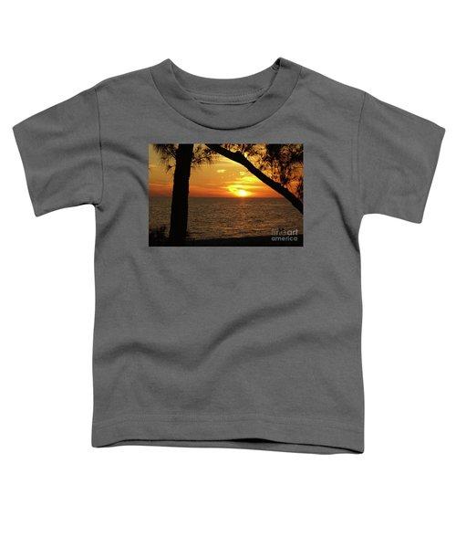 Sunset 2 Toddler T-Shirt by Megan Cohen