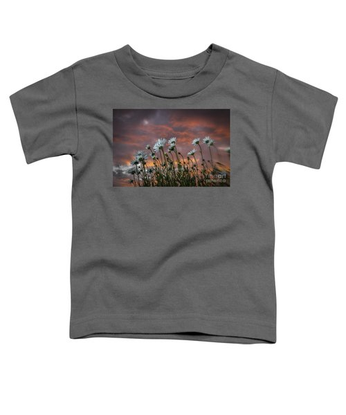 Sunset And Daisies Toddler T-Shirt