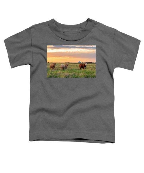 Sunset Cattle Toddler T-Shirt