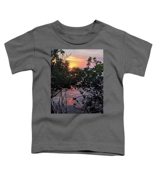 Sunset, Hutchinson Island, Florida  -29188-29191 Toddler T-Shirt