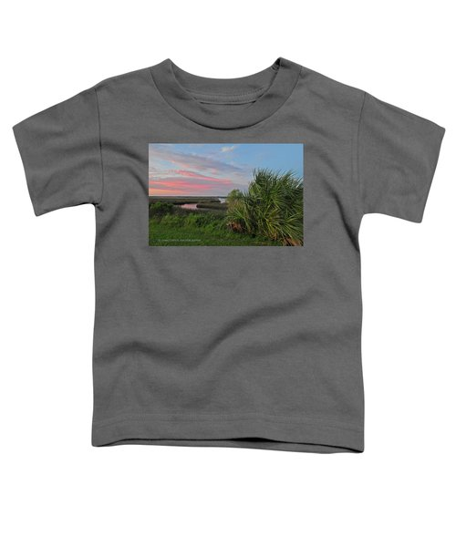 D32a-89 Sunset In Crystal River, Florida Photo Toddler T-Shirt