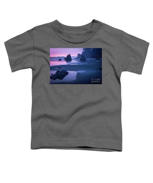Sunset In Ruby Beach Toddler T-Shirt
