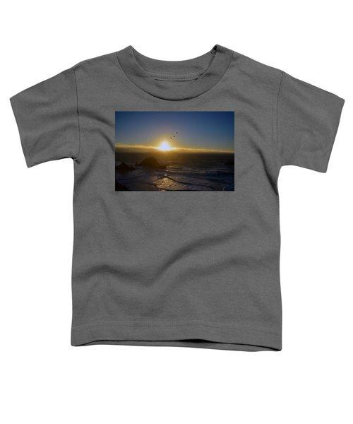 Sunset In San Francisco Toddler T-Shirt
