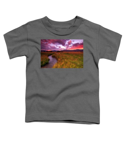 Sunset In The North Fields. Toddler T-Shirt