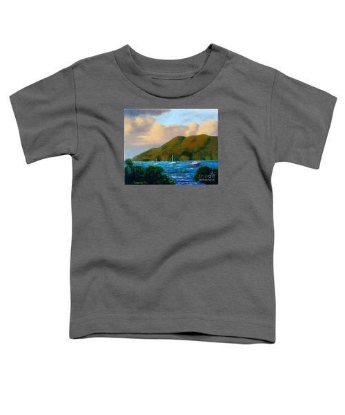Sunset On Cruz Bay Toddler T-Shirt