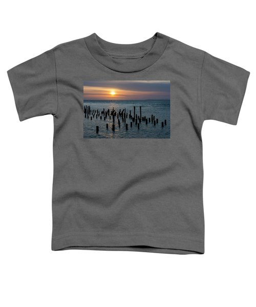 Sunset On The Empire Toddler T-Shirt