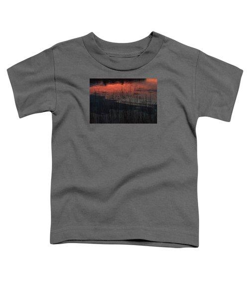 Sunset Reeds Toddler T-Shirt by Gary Eason