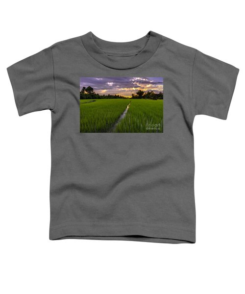 Sunset Rice Fields In Cambodia Toddler T-Shirt