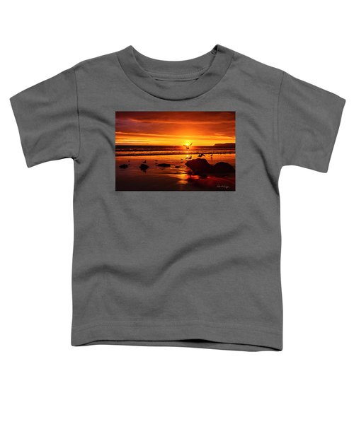Sunset Surprise Toddler T-Shirt