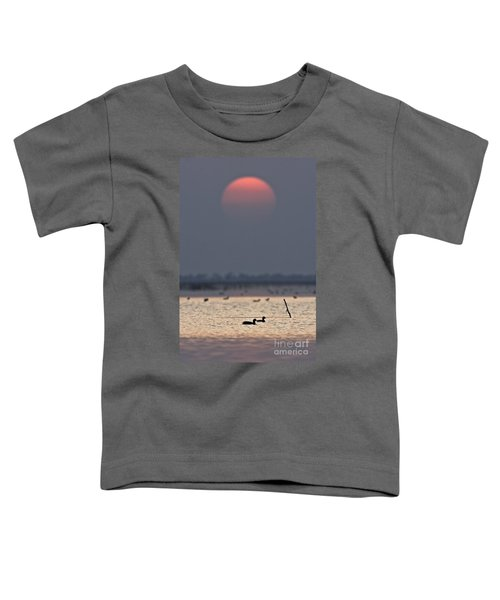 Sunset With Coots Toddler T-Shirt
