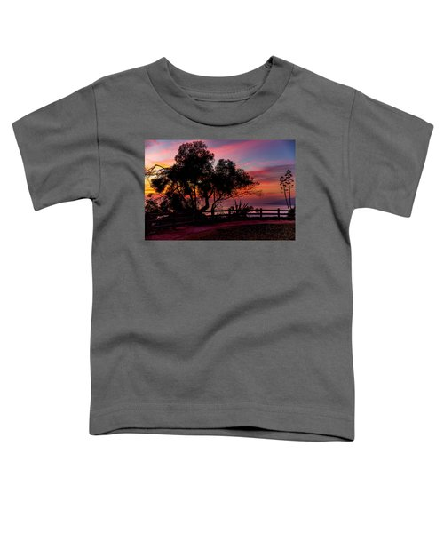 Sunset Silhouettes From Palisades Park Toddler T-Shirt