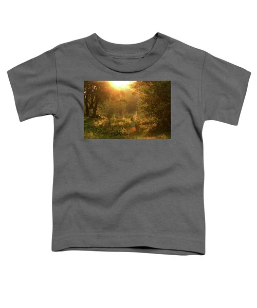 Sunshine In The Meadow Toddler T-Shirt