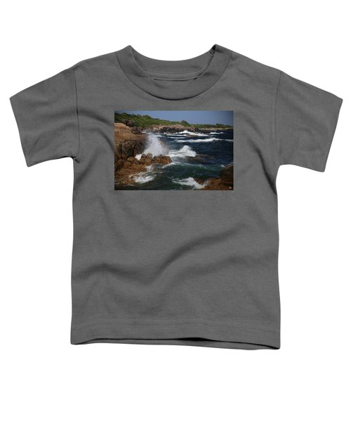 Surf At Biddeford Pool Toddler T-Shirt