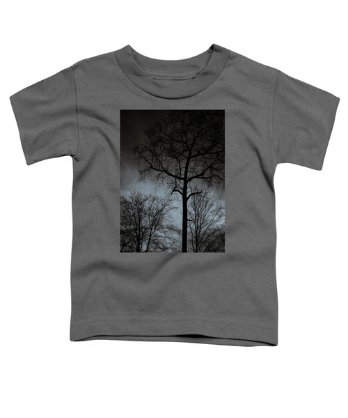 Surrounded Toddler T-Shirt