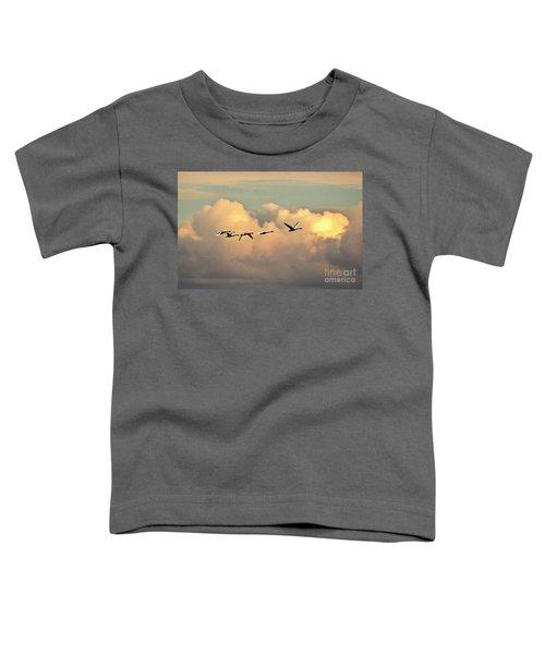 Swan Heaven Toddler T-Shirt