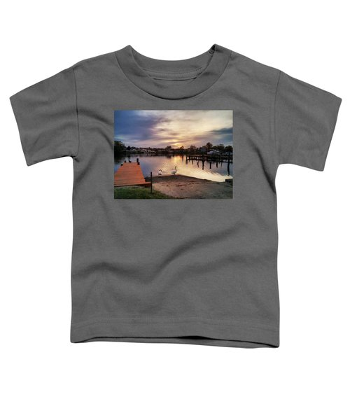 Swans Of Chink Creek Toddler T-Shirt