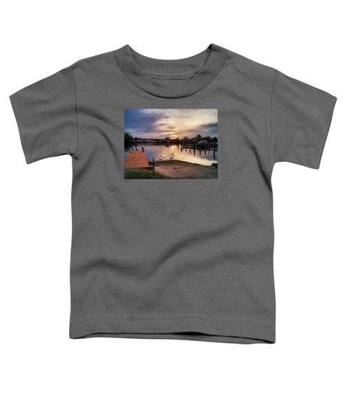 Swans Of Chink Creek Toddler T-Shirt