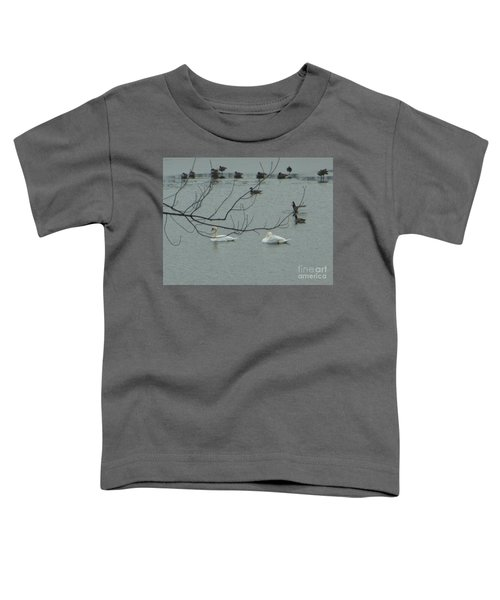 Swans With Geese Toddler T-Shirt