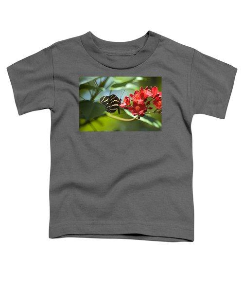 Sweet Nectar Toddler T-Shirt