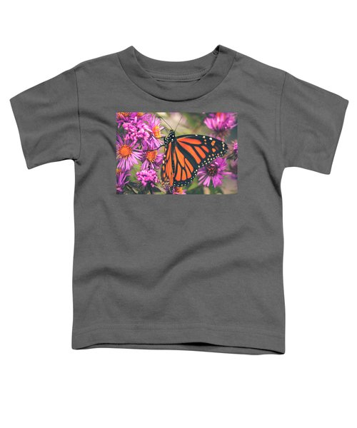 Sweet Surrender Toddler T-Shirt