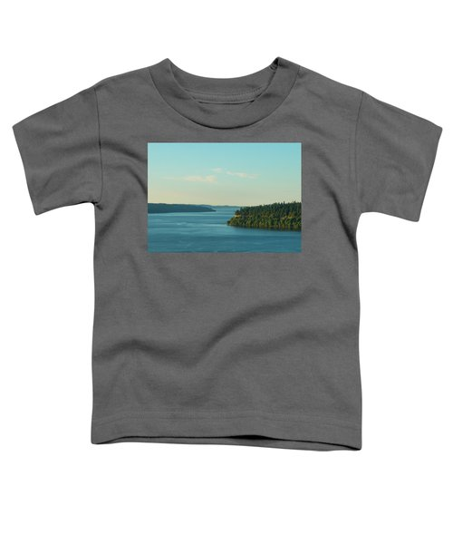 Tacoma Narrows And Commencement Bay II Toddler T-Shirt