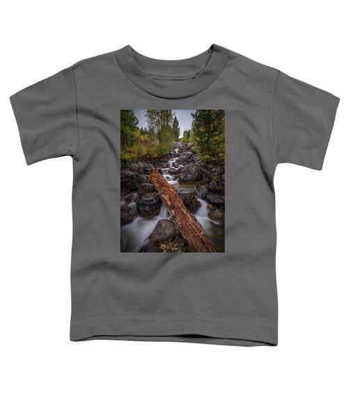 Taggert Creek Waterfall Log Toddler T-Shirt