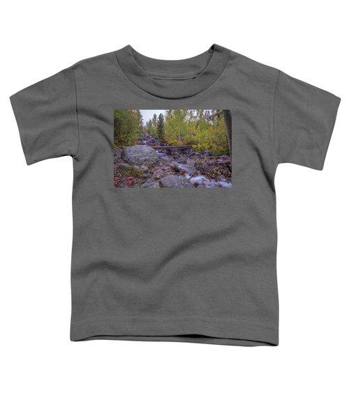 Taggert Creek Waterfall Toddler T-Shirt