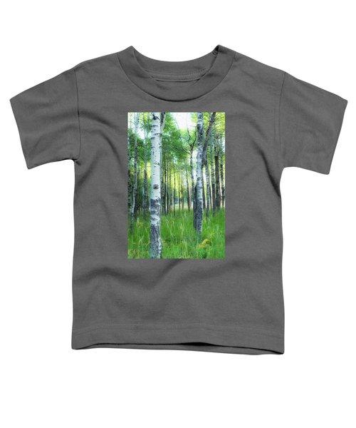 Tahoe Birch Toddler T-Shirt